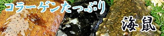 瀬戸内産 天然ナマコ