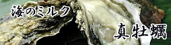 瀬戸内産 殻付き牡蠣