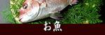 瀬戸内海のお魚