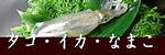 瀬戸内海のタコ・イカ・ナマコ