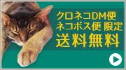 ネコポス・DM便限定送料無料