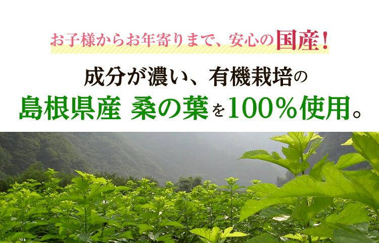 桑の葉100%