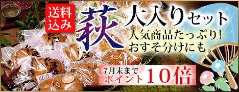 【7月ポイント10倍!】萩大入りセット メガ盛り