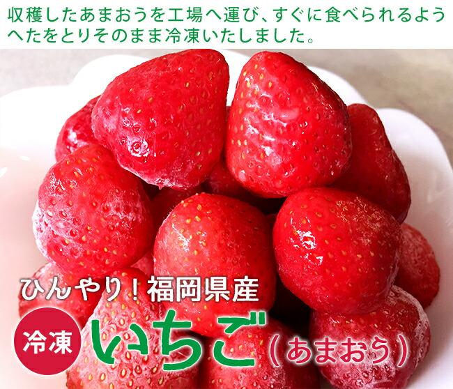 ひんやり福岡県産「冷凍いちご(あまおう)」400g