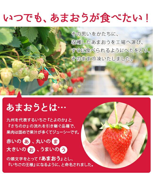 ひんやり福岡県産「冷凍いちご(あまおう)」あまおうとは