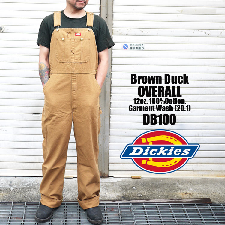 dic-db100.jpg