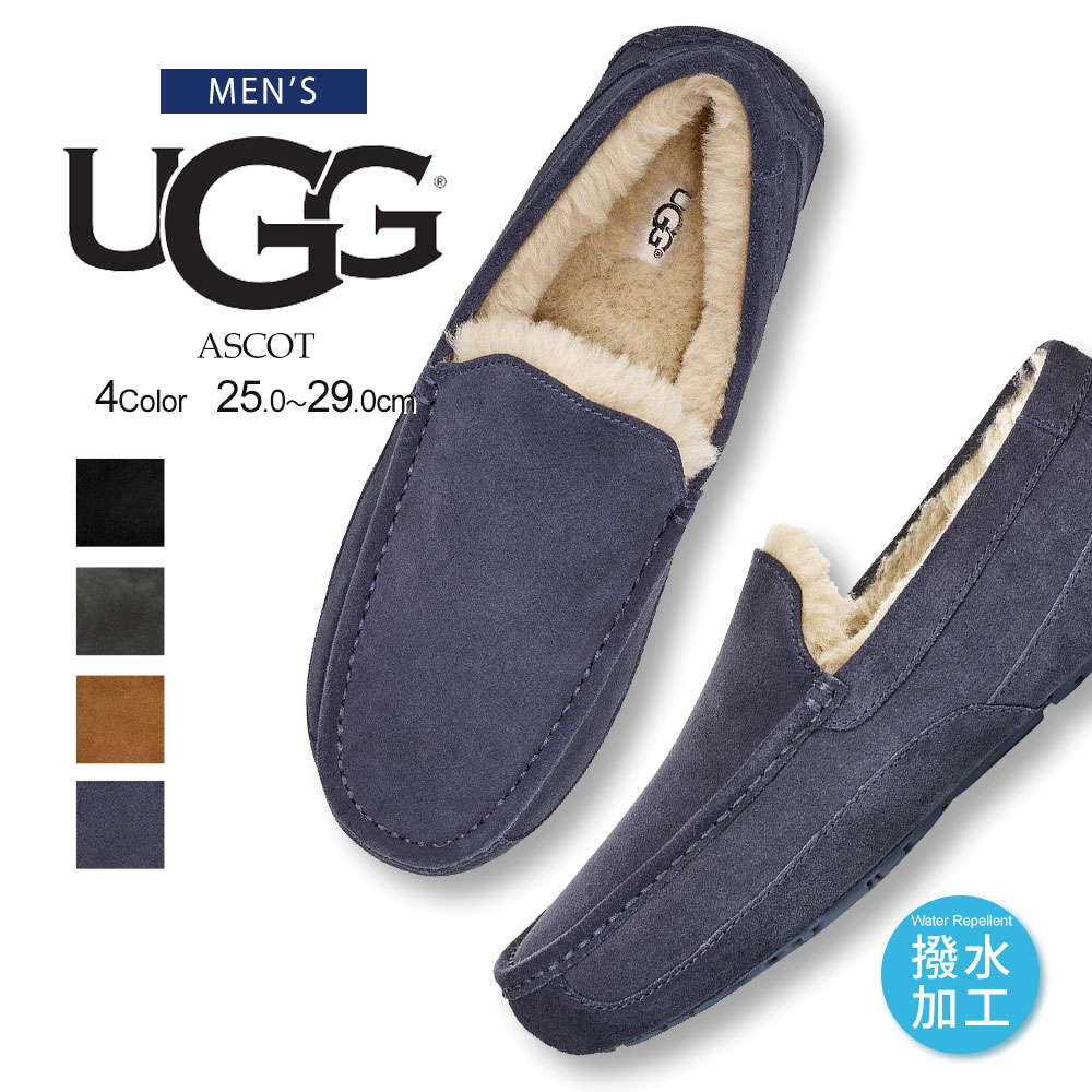 UGG MENS ASCOT