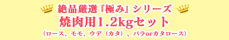 絶品厳選『極み』シリーズ 焼肉用1.2kgセット(ロース、モモ、ウデ(カタ)、バラorカタロース)