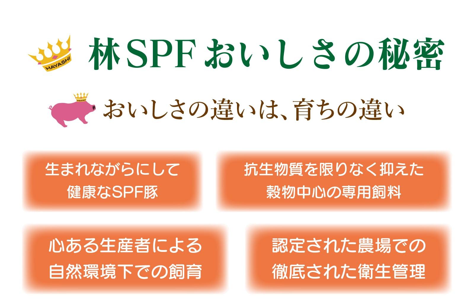 林SPFおいしさの秘密。おいしさの違いは、育ちの違い。生まれながらにして健康なSPF豚、抗生物質を限りなく抑えた穀物中心の専用飼料、心ある生産者による自然環境下での飼育、認定された農場での徹底された衛生管理
