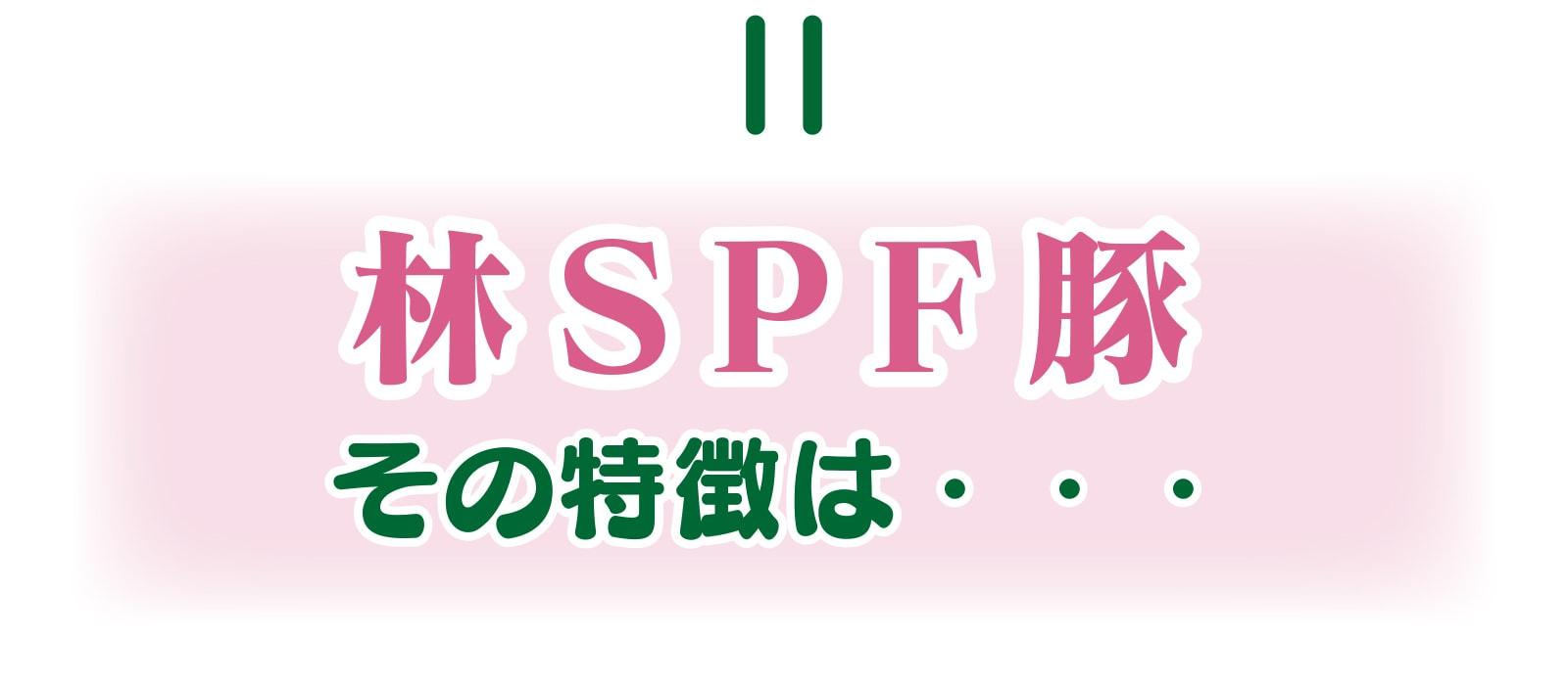 林SPF豚その特徴は...