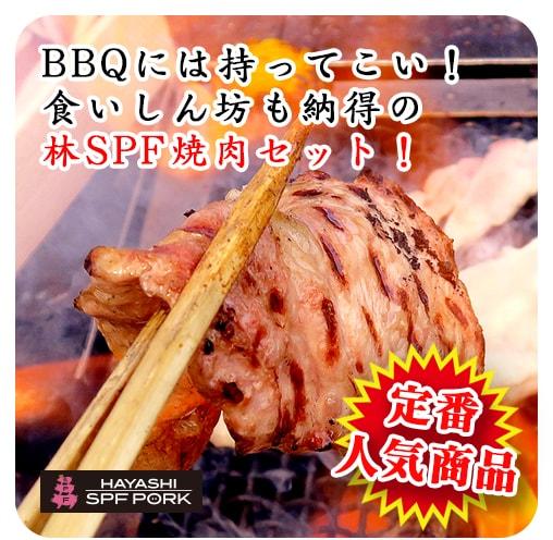 定番人気商品 BBQには持ってこい!食いしん坊も納得の林SPF焼肉セット!