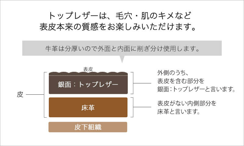 本革 バッグ 底鋲つき・型押し 改良版 【 mini Loche ミニロシェ 】