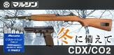 CDX/CO2
