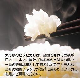 お米,ひのひかり,九州,大分県産,精米,玄米