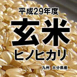 お米,ひのひかり,玄米,大分県産
