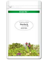 エクレクティック バードック Ecoパック180 500mg×180cp