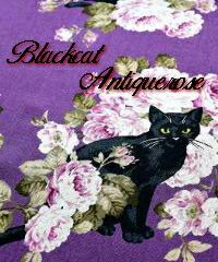 黒猫と薔薇