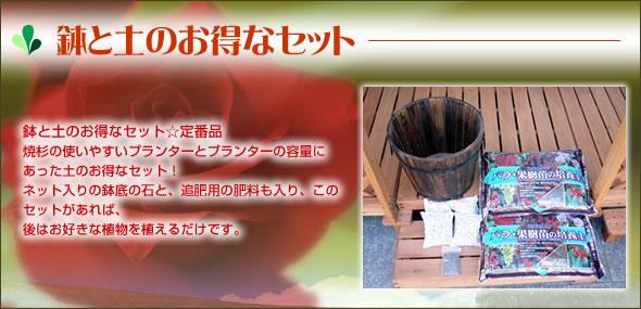 鉢と土のお得なセット