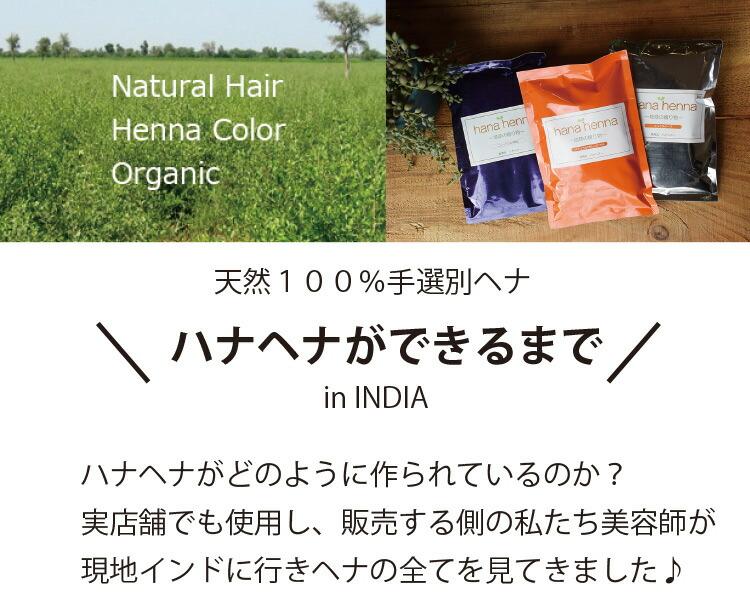 ハナヘナがどのように作られているのかヘアサロンでも使用し、販売する側の私たち美容師が現地インドに行きヘナの全てを見てきました