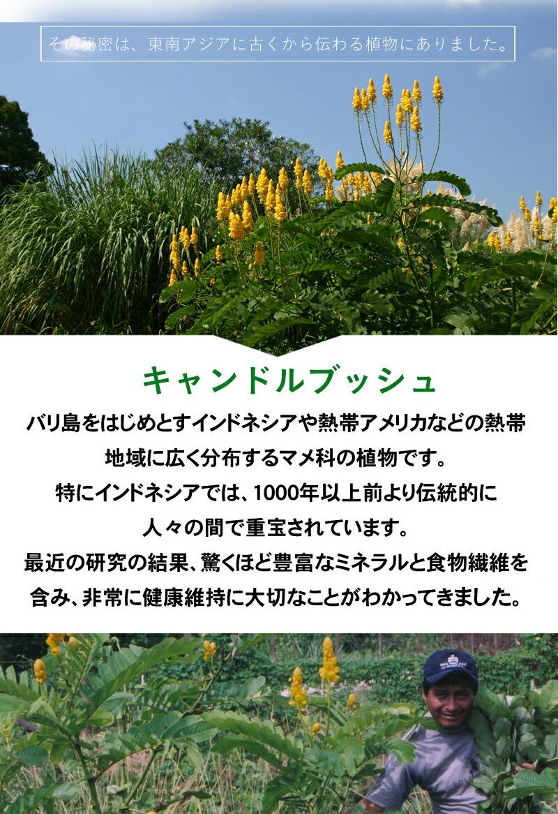 benmax3_09_01.jpg
