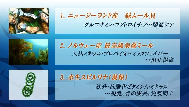 fish4dog、フィッシュ4ドッグ 海洋ナチュラルサプリメント