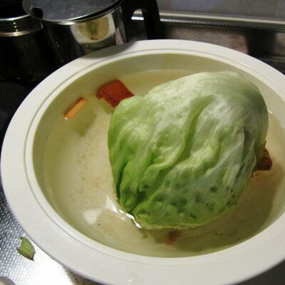 ヒバチップを少量水に入れて下さい!野菜が元気に!花瓶の花も長持ち!