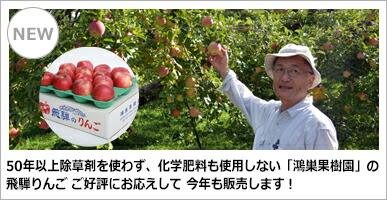 鴻巣果樹園 りんご