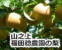 福田稔農園