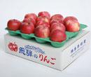 飛騨リンゴ 鴻巣果樹園 飛騨りんご詰合せ 5kg ご自宅用小さなキズ有