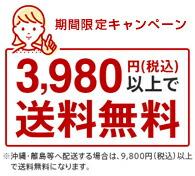 楽天 3980円以上 送料無料