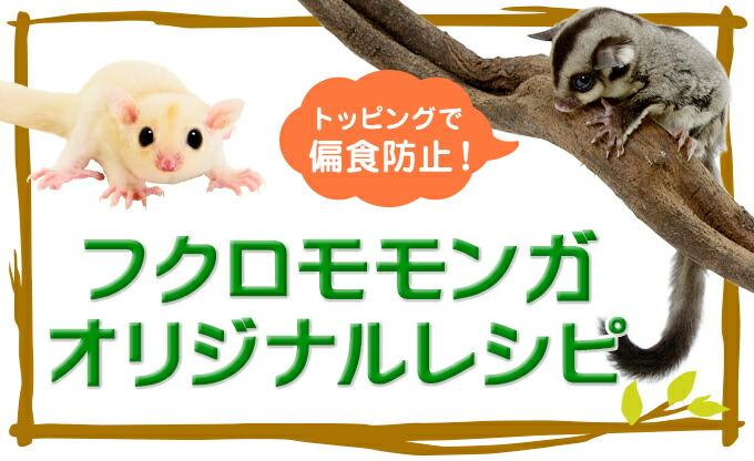 フクロモモンガ オリジナルレシピ