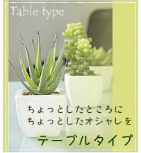 テーブルタイプ 観葉植物 光触媒