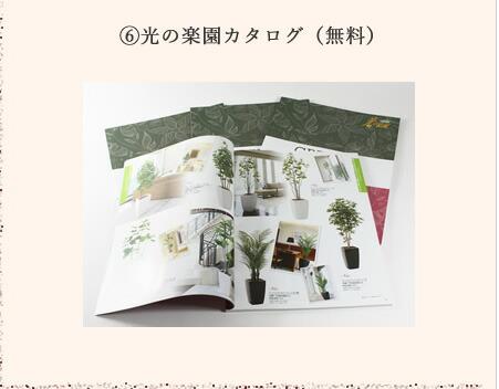 光の楽園 カタログ ギフト プレゼント 観葉植物 造花