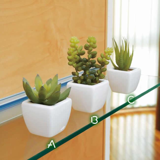 光触媒 光の楽園 多肉植物個3個セット 【インテリア ミニグリーン 人工観葉植物 】