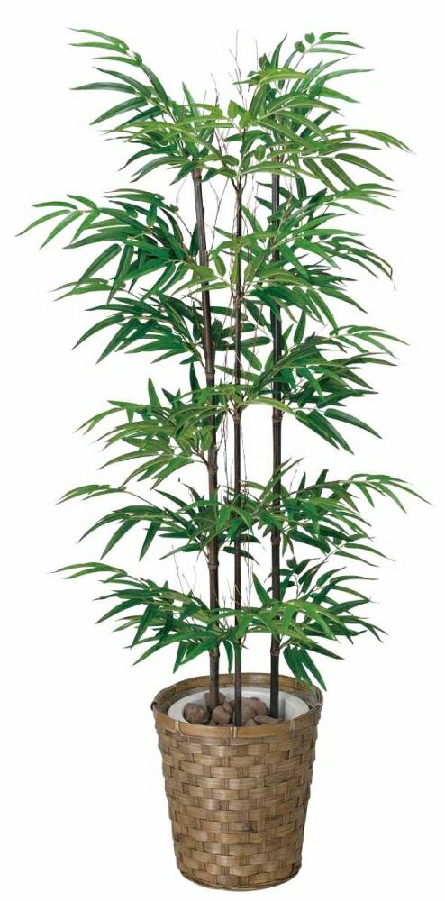 光触媒 光の楽園 黒竹 【インテリアグリーン フロアタイプ 人工観葉植物 】高さ1.2m