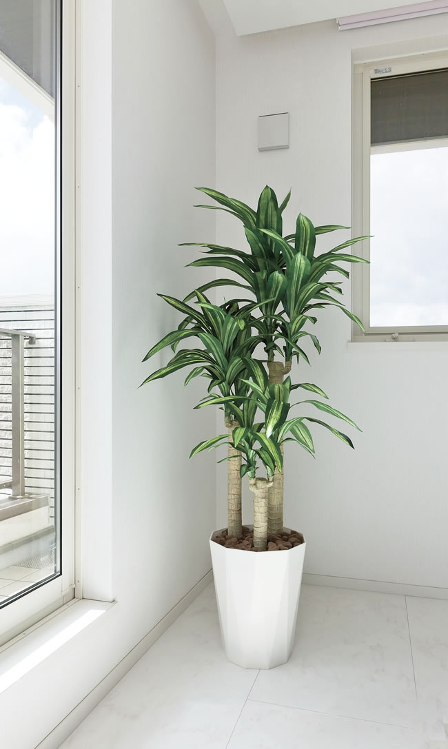 光触媒 光の楽園幸福の木 1.6m【インテリアグリーン 人工観葉植物】