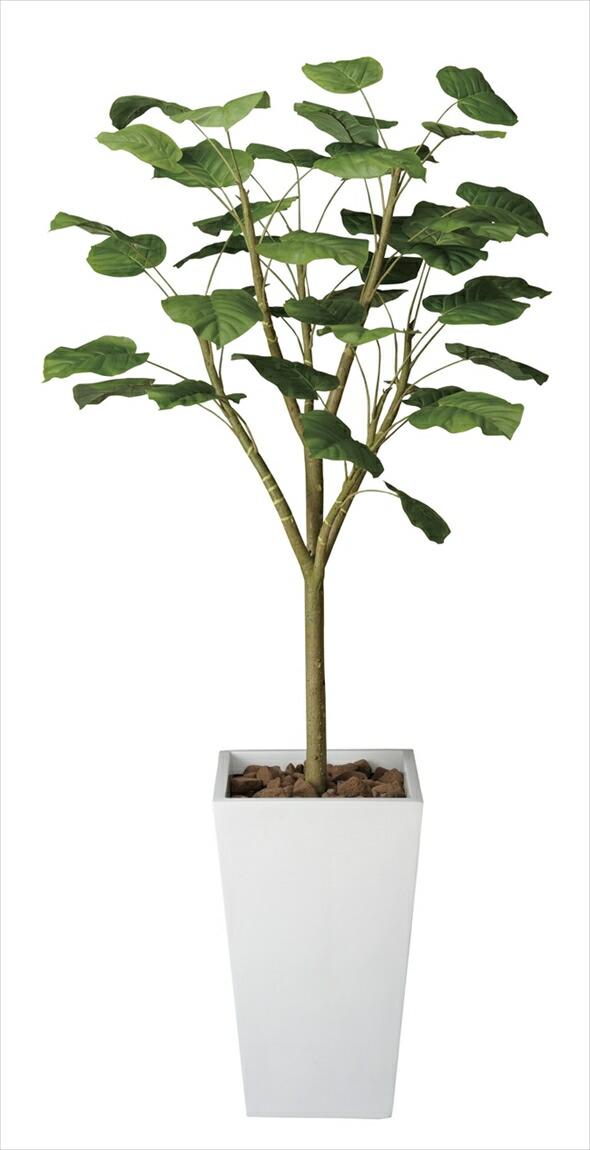 光触媒 光の楽園ウンベラータW1.8m【インテリアグリーン 人工観葉植物】