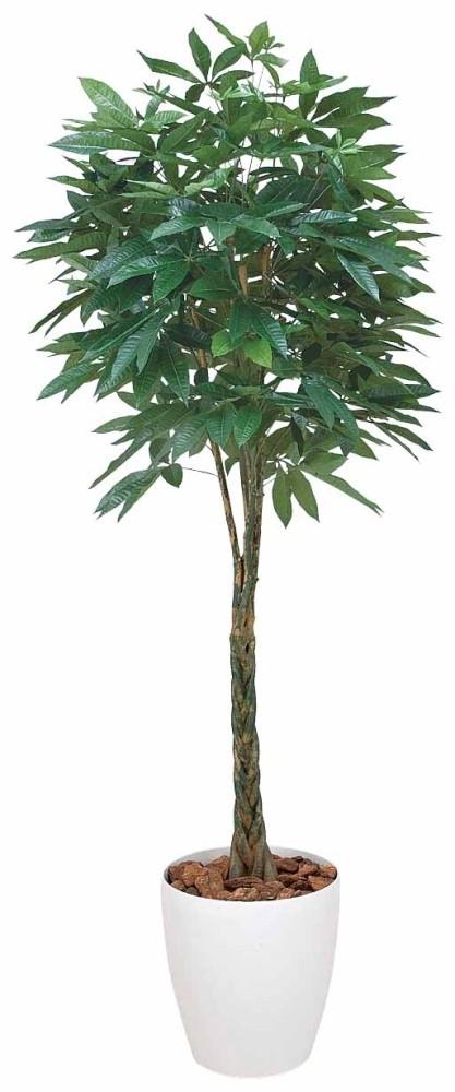 光触媒 光の楽園パキラ 2.0m【インテリアグリーン 人工観葉植物】