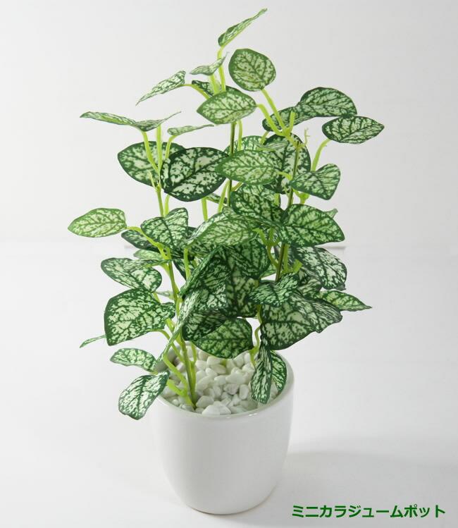 光触媒 光の楽園ミニアイビーポット【インテリアグリーン 人工観葉植物】