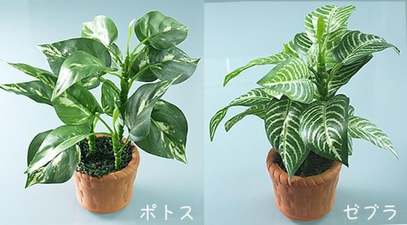 【光触媒人工植物】【造花】光の楽園