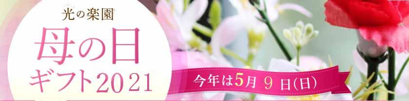 花と観葉植物の専門店
