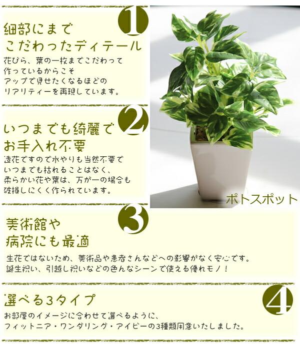 光触媒 光の楽園 インテリア ミニグリーン 人工観葉植物