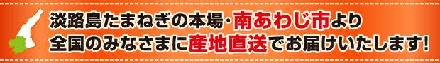 淡路島たまねぎの本場・南あわじ市より全国のみなさまに産地直送でお届けいたします!