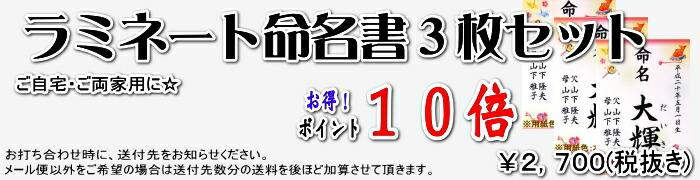 メール便送料無料!筆耕屋さんのラミネート命名書3枚セット☆出産祝い・ご自宅用・ご実家用に☆