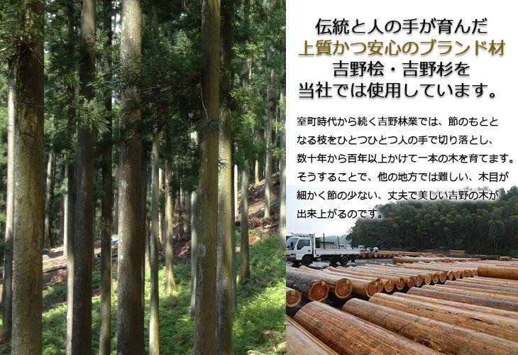 吉野の木について