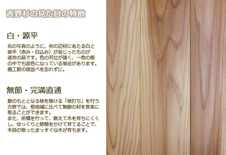 吉野杉の特徴