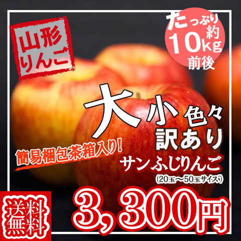 山形県産・サンふじりんご約10kg