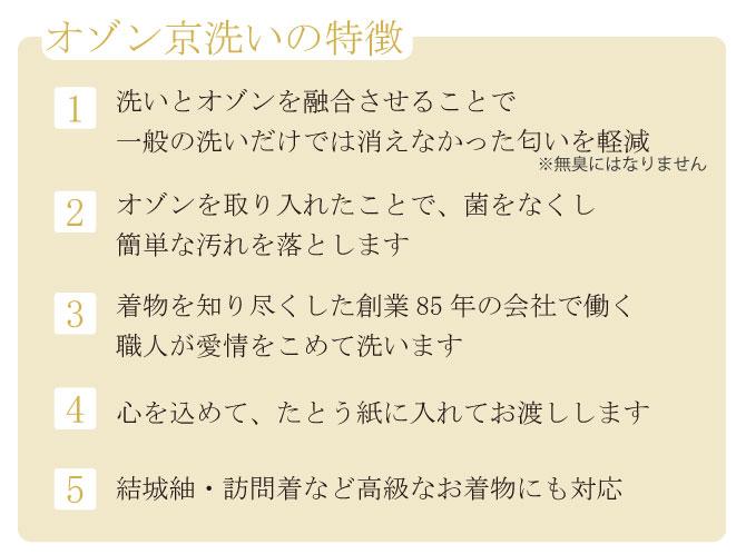 オゾン京洗い(着物)