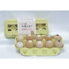 ひよころ鶏園の地鶏卵お試しセット10個入(烏骨鶏2個・軍鶏2個・コーチン2個・岡崎おうはん2個・にいいがた地鶏2個)
