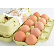 国産赤鶏あずさの平飼い有精卵10個入